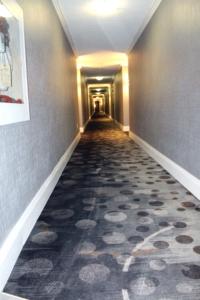 Hallway 4th Floor 1a